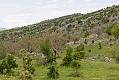 20110507_Turkey_120902_CR